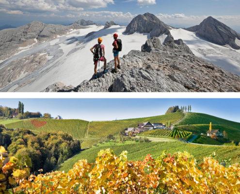 Vom Gletscher zum Wein